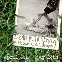 Leap Into Spring! Photo Challenge